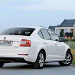 Njen test: Škoda Octavia 1.6 TDI (81 kW) Greenline (foto: Saša Kapetanovič, Uroš Jakopič, Tina Torelli)
