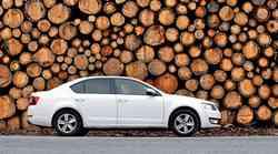 Podaljšani test: Škoda Octavia 1.6 TDI (81 kW) Greenline