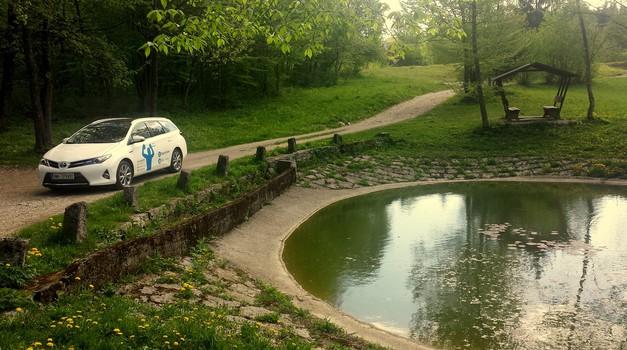 S hibridnim Auris po gozdnih poteh (foto: Srečko Zupančič)
