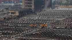Katastrofa v Tianjinu uničila več kot 7000 avtomobilov