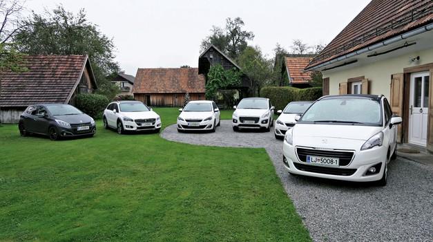 Samodejni menjalniki kos ročnim (foto: Matija Janežič; Peugeot)