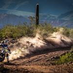 Dakar 2017: od 4. etape brez treh favoritov. Odstopili Price, Al-Attiyah in Sainz! (foto: Marcin Kin / KTM Media Library)