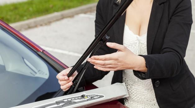 Pomlad je pred vrati – je vaš avto že pripravljen nanjo? (foto: Silux)