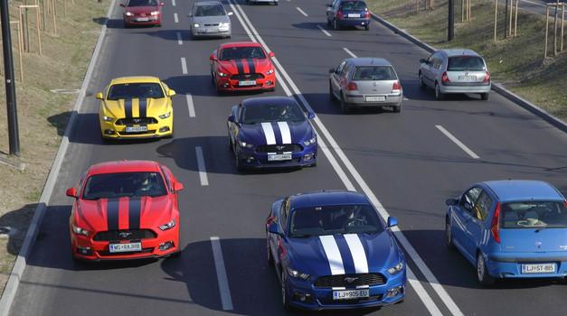 Postanite del karavane Fordovih Mustangov (foto: Klemen Brumec)
