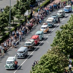 350 Volkswagnovih Transporterjev v konvoju (foto: VW)