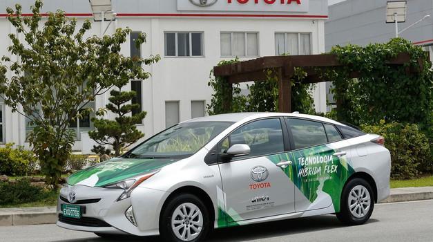 Toyota Prius ne bo več 'izbirčna' pri izbiri goriva (foto: Toyota)