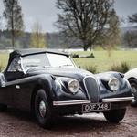 Zgodovina: Jaguar – hitra mačka, ki znova glasno prede (foto: Jaguar)