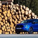 Test: Ford EcoSport ST-Line 1.0 EcoBoost 103 kW (foto: Saša Kapetanovič)