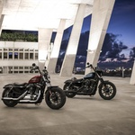 Vozili smo: Harley-Davidson Iron 1200 in Forty-Eight Special (foto: Amy Shore)