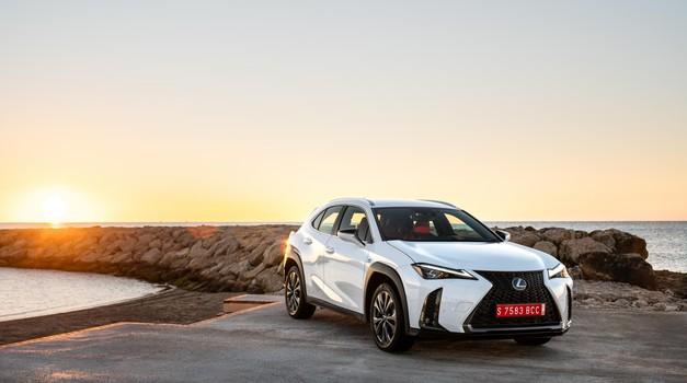 Majhen, a za Lexus velik (foto: Lexus)