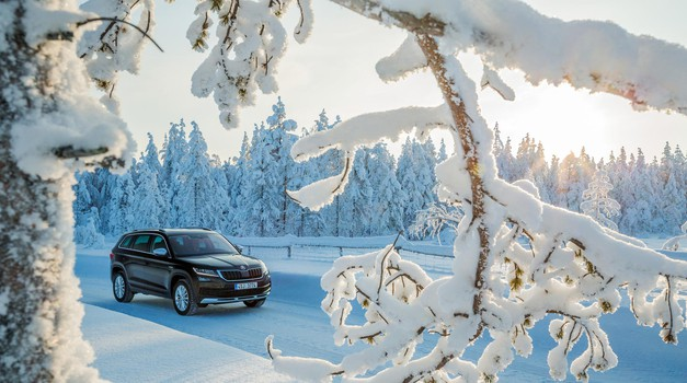 Zima bela (foto: Skoda Auto)